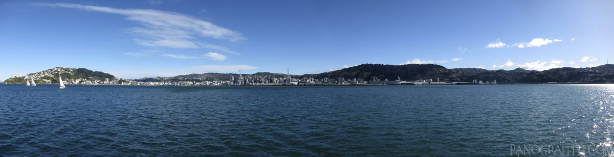Wellington Waterfront and Sailboats - Wellington CBD from the harbour on the ferry to Somes Island
