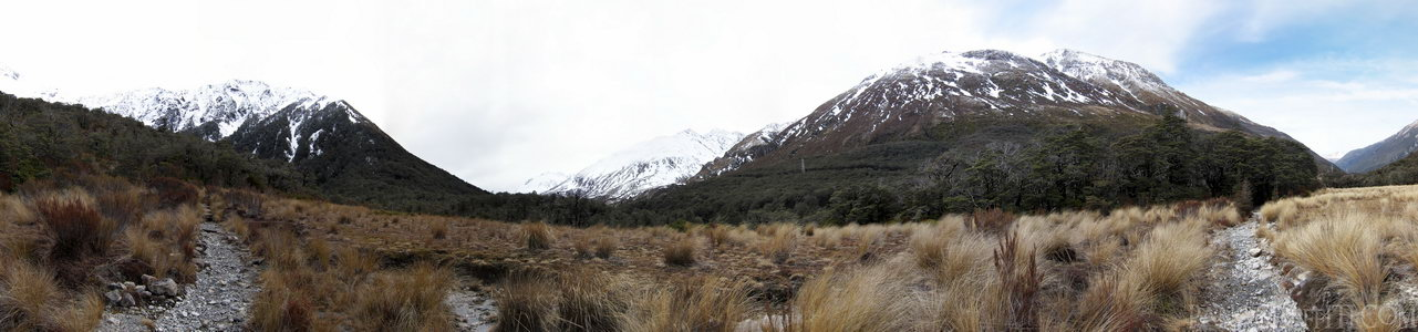 Cloudy Day on Bealey Valley Track - Arthur's Pass National Park, Canterbury, New Zealand